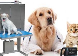 veterinary-equipment-disposable-market