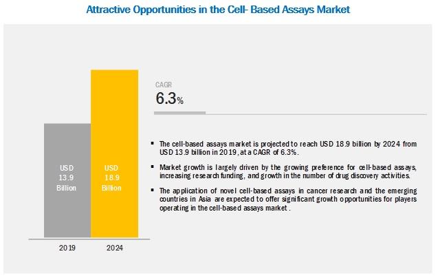 Cell based Assay Market
