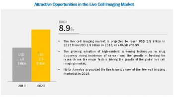 Live Cell Imaging Market – Most Effective Growth Strategies Adopted by Key Players