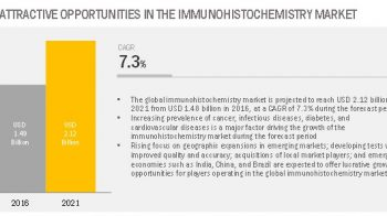 Rapid Growth in the Developing Countries in Immunohistochemistry Market