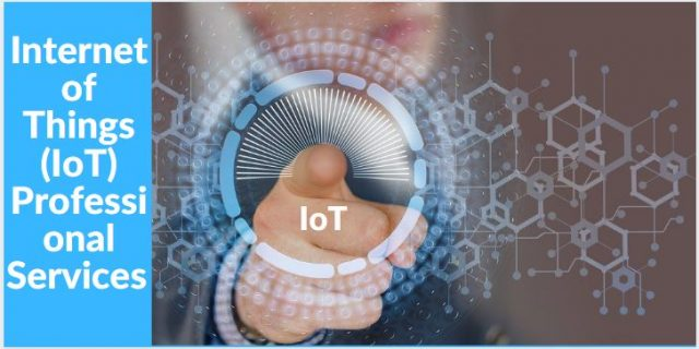 Internet of Things Professional Services Market