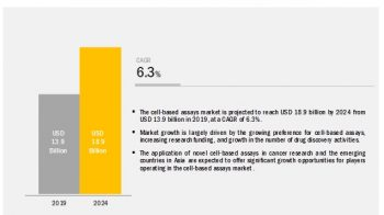 Cell based Assays Market Trends Estimates High Demand by 2024
