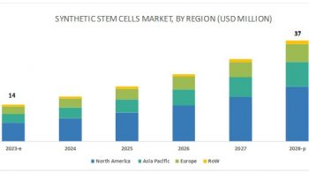 Worldwide Synthetic Stem Cells Market: Industry Growth, Dynamics, Segmentation and Forecast