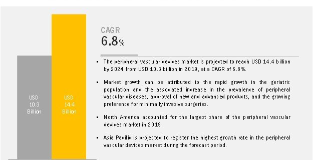 Peripheral Vascular Devices Market