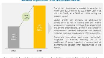 Bioinformatics Market | Clinical Diagnostics and Personalized Medicine