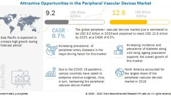 Minimally Invasive Surgeries are Driving the Growth of the Peripheral Vascular Devices Market in 2020