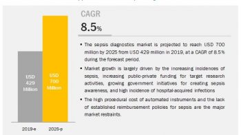 Sepsis Diagnostics Market: Increasing Public-private Funding for Target Research Activities
