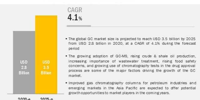 Gas Chromatography Market