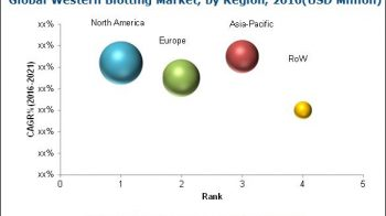 Western Blotting Market To Reach USD 730.7 Million By 2021 – Analysis Of Emerging Growth Factors