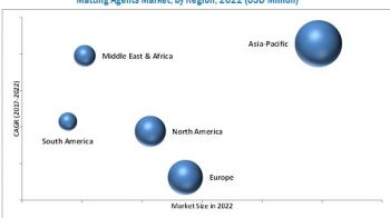 Major Manufactures in the Matting Agents Market