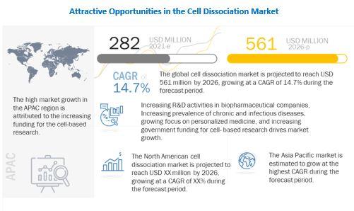 Cell Dissociation Market