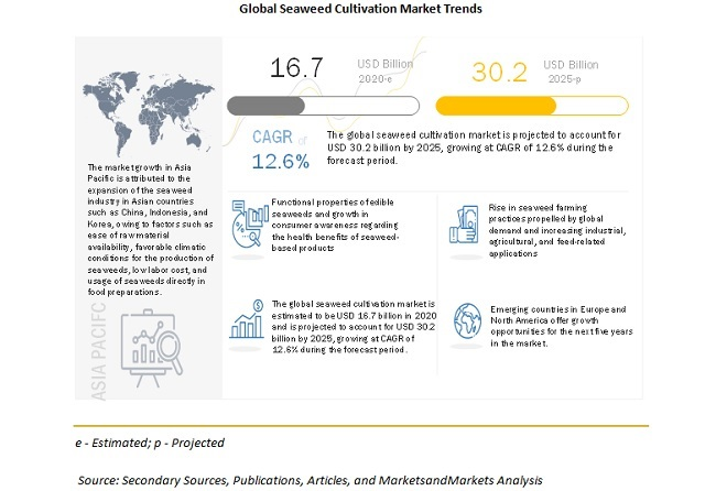 Seaweed Cultivation Market - Trends & Scenario (2020–2025) - MarketsandMarkets Blog