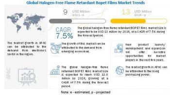 Halogen-Free Flame Retardant Bopet Films Market – Key Market Players