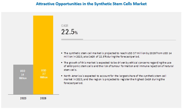 Synthetic Stem Cells Market