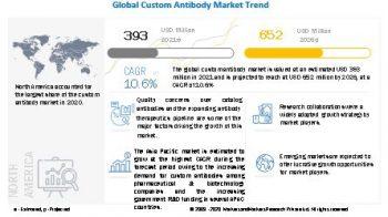 Custom Antibody Market worth $652 million by 2026 – Exclusive Report by MarketsandMarkets™