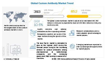 Custom Antibody Market