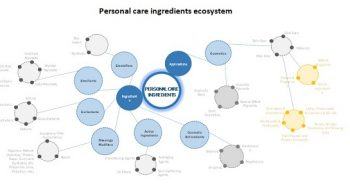 Personal Care Ingredients Market – Key Players