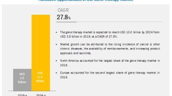 Gene Therapy Market Worth $13.0 Billion by 2024 – Exclusive Report by MarketsandMarkets™